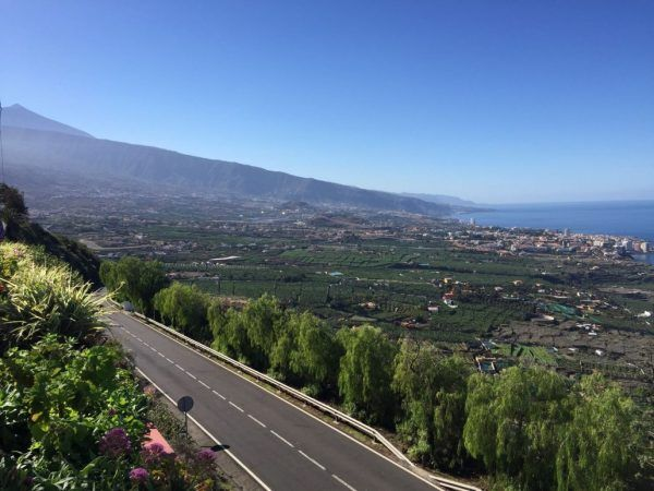 Island Tour Excursion. The cheapest way to know the island of Tenerife