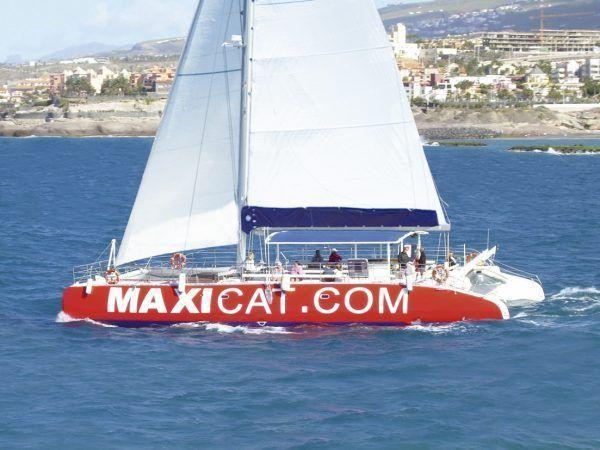Maxicat Catamaran Trip Tenerife. Cheap Excursions. Dolphins & whales