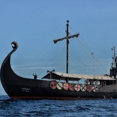 Ragnarok Boat Trip Tenerife. Cheap Excursions. Vikings, Dolphins, whales