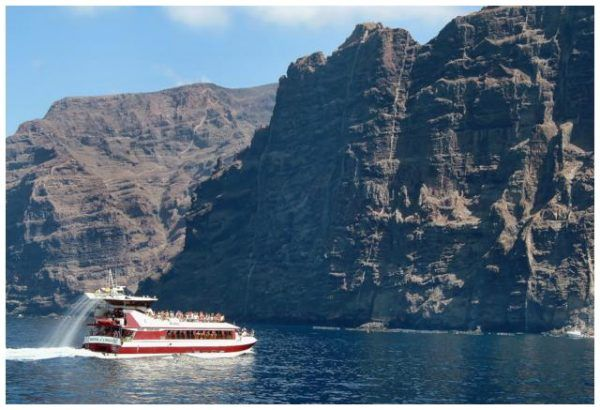 Royal Dolphin Boat Trip Tenerife. Cheap Excursions. Dolphins & whales