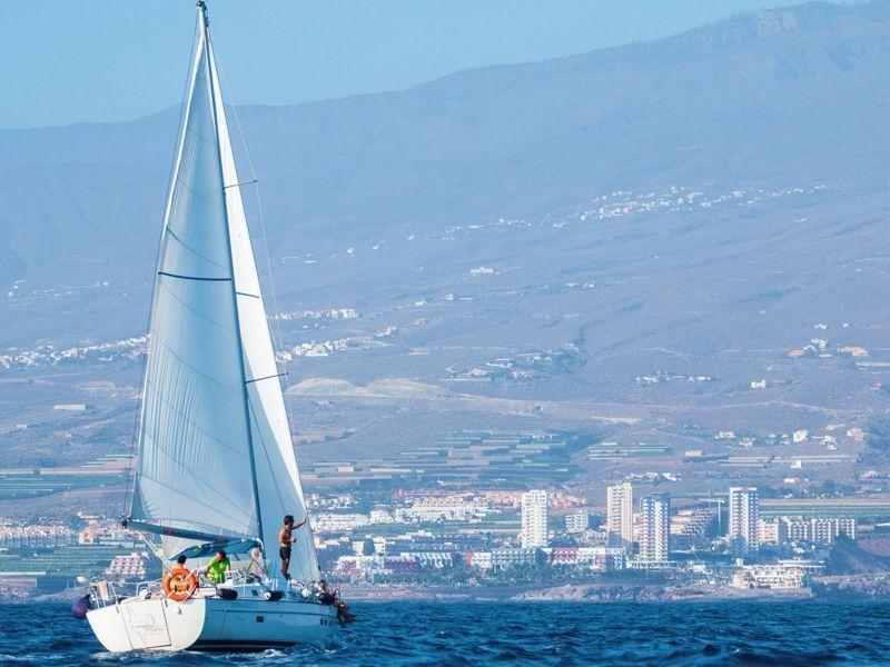 Paseo en velero tenerife la oferta m s barata ba o privado delfines y ballenas - Bano barato tenerife ...